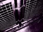 My Torture chamber.jpg